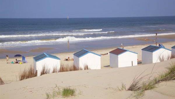 campingplatz de koog texel niederlande campingdreams. Black Bedroom Furniture Sets. Home Design Ideas